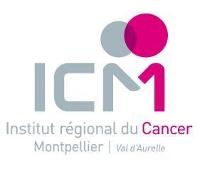 Contrôle de gestion stratégique à l'ICM